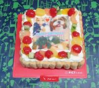 2015年6月18日美恵子誕生日ケーキ