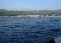 2015年5月15日早川漁港